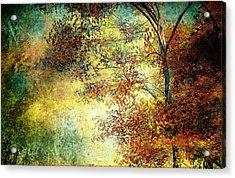 Wondering Acrylic Print