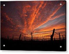 Wonderous Sky Acrylic Print by Shirley Heier