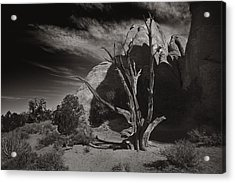 Acrylic Print featuring the photograph Wood And Stone by Wendell Thompson