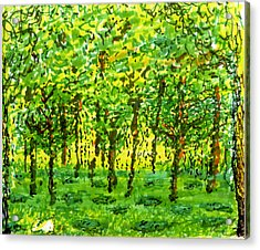 Wood Between The Worlds Acrylic Print