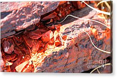 Wood Chips Acrylic Print