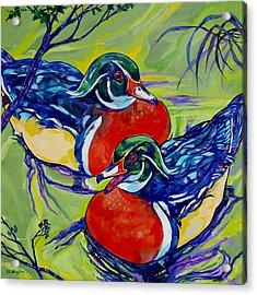 Wood Duck 2 Acrylic Print by Derrick Higgins