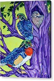 Wood Duck Tree Acrylic Print by Derrick Higgins
