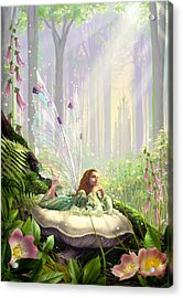 Wood Fairy Acrylic Print by Garry Walton