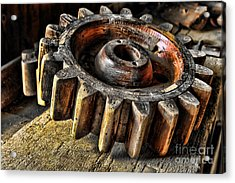 Wood Gears Acrylic Print by Olivier Le Queinec