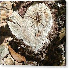 Wood Heart Acrylic Print