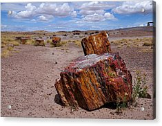 Wood To Stone Acrylic Print by Gene Sherrill