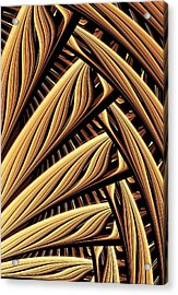 Wood Weaving Acrylic Print