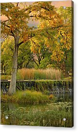 Woodcreek Bridge Acrylic Print