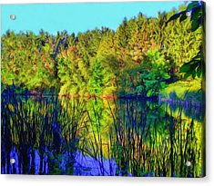 Acrylic Print featuring the digital art Wooded Shore Through Reeds by Dennis Lundell