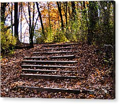 Wooded Stairs Acrylic Print