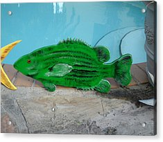Wooden Bass Fish Acrylic Print by Val Oconnor