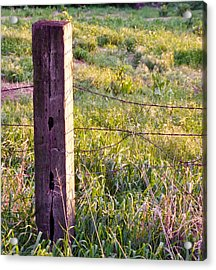 Wooden Fencepost Acrylic Print by Tracy Salava