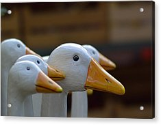Wooden Geese Acrylic Print