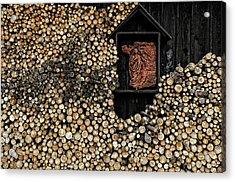 Wooden Madonna Acrylic Print