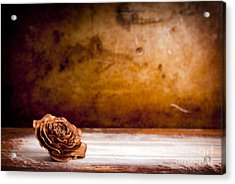 Wooden Rose Background Acrylic Print by Tim Hester