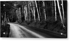 Woodland Drive Acrylic Print by Wendell Thompson