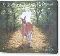 Woodland Encounter Acrylic Print
