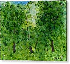 Woodland Haven Acrylic Print