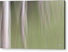 Woodland Nymphs Acrylic Print