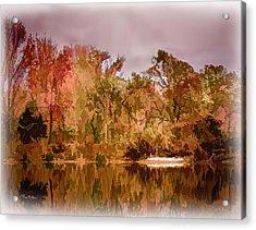 Woodland Reflections Acrylic Print by Barry Jones