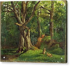 Woodland Scene With Rabbits Possibly Signed Acrylic Print