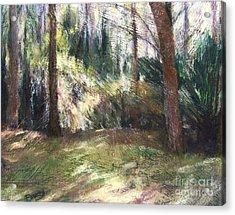 Woodland Shadows Acrylic Print by Mary Lynne Powers