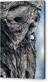 Woodman Acrylic Print by Petros Yiannakas