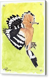 Woodpecker Acrylic Print by Lynda Cookson