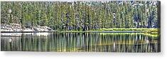 Woods Lake 4 Acrylic Print