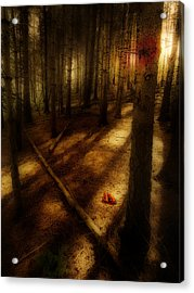 Woods With Pine Cones Acrylic Print by Meirion Matthias