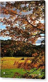 Woodstock Vermont Acrylic Print by Edward Fielding