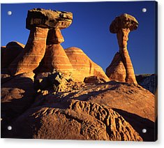 Woody Toadstools Acrylic Print by Ray Mathis