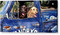 Work And Play Acrylic Print by Molly Poole