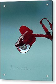World In A Drop Acrylic Print