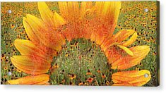 World Of Flowers Acrylic Print