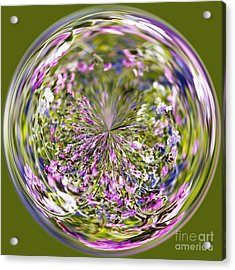 World Of Welsh Wildflowers Acrylic Print by Anne Gilbert