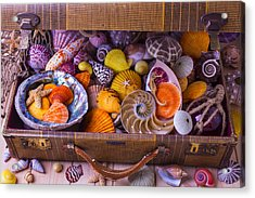 Worn Suitcase Full Of Sea Shells Acrylic Print by Garry Gay