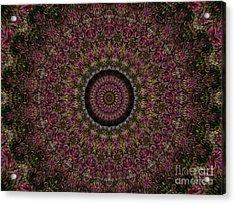 Woven Kaleidoscope Acrylic Print by R McLellan