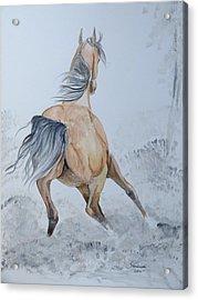 Wow Acrylic Print by Janina  Suuronen