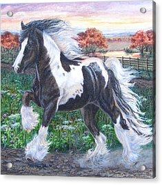 Wr Sundance Gypsy Horse Acrylic Print
