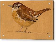 Wren Bird Acrylic Print by Juan  Bosco