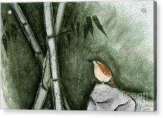 Wren In Bamboo Acrylic Print