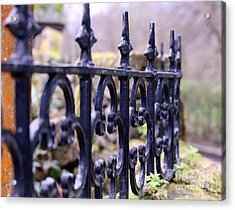 Wrought Iron Fence 1 Acrylic Print by Kate Purdy
