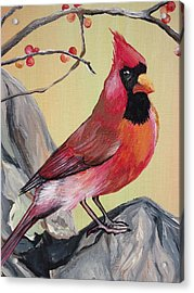 Wv State Bird Acrylic Print