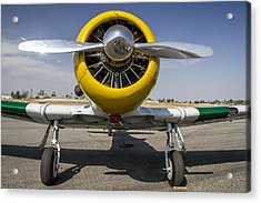Wwii Fighter 2 Acrylic Print