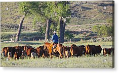Wyoming Country Acrylic Print