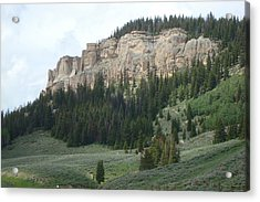 Wyoming Landscape Acrylic Print by Susan Woodward