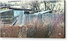 Wyoming Sheds Acrylic Print by Lenore Senior