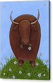Whimsical Yak Painting Acrylic Print by Christy Beckwith